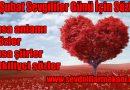 14 Şubat Sevgililer Günü İçin Sözler