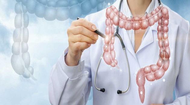Basur Hemoroid Nedir Neden Oluşur ve Nasıl Tedavi Edilir
